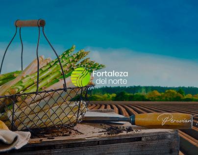 Landing Fortaleza