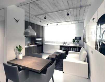 Small Apartment interior 2009