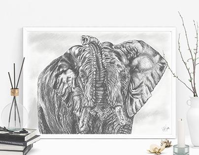 Work in progress - Elephant