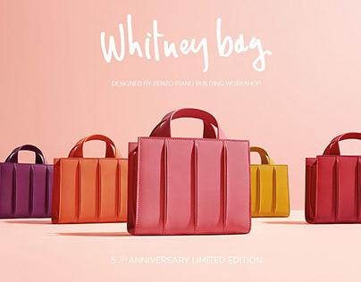MAX MARA / Special Edition 5th Anniversary Whitney Bag