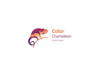 Color Chameleon Brand