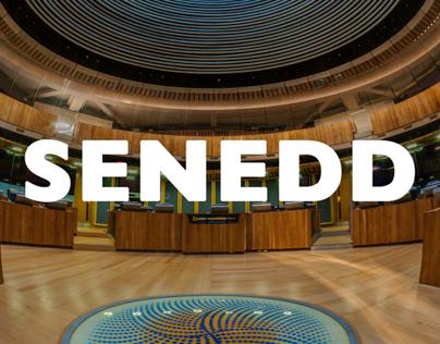 The Senedd