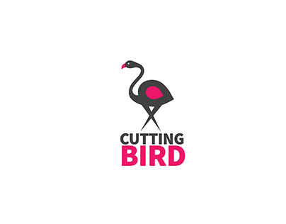 Cutting Bird Video Editors