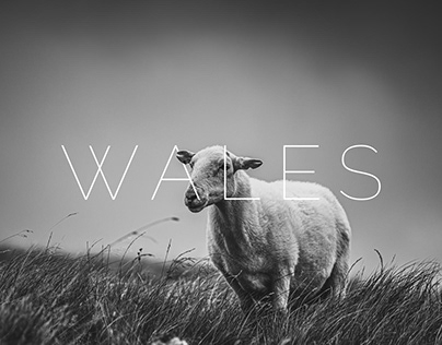 WALES 2019