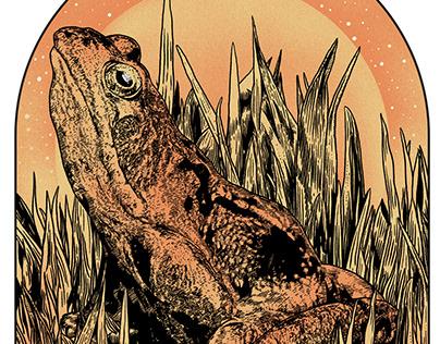 Orange Frog Yoga - Logo design.