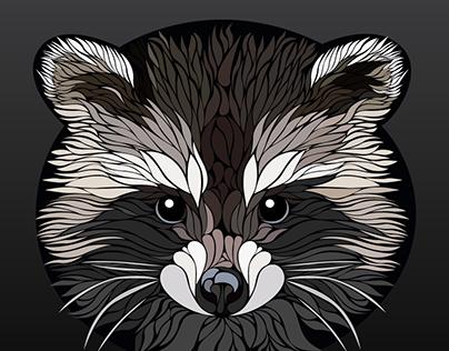fluffy raccoon