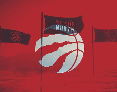 WE THE NORTH STADIUM GRAPHICS