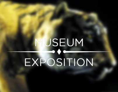 Museum Exposition