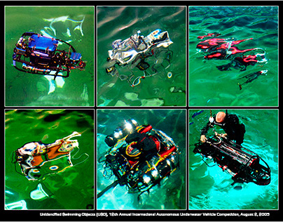 Unidentified Swimming Objects (USOs) - AUVs