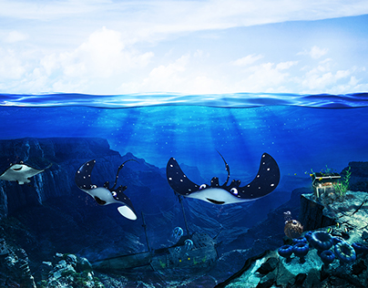 Deep Sea Friends