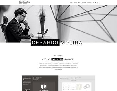 Portfolio website www.gerardomolina.com.es (Wordpress)