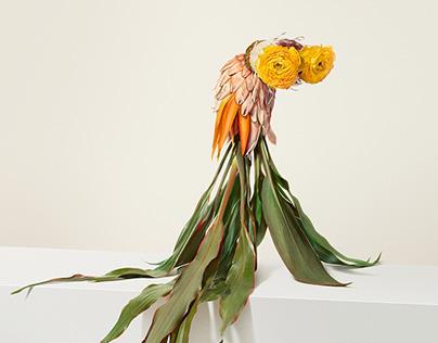 Flower Creatures