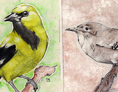 Aves de Bogotá