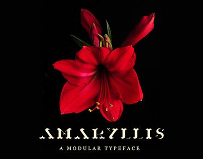 Amaryllis Modular Typeface