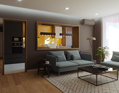 Dark Tones in a 2-Room Apartment in Oradea, Romania