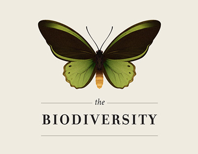 The Biodiversity | Infographic