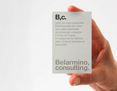 Belarmino, consulting