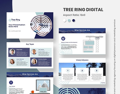 Sample 24. Tree Ring Digital