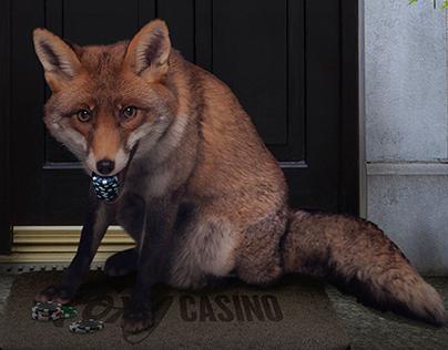 Losses Back, web commercial campaign - Foxy Casino.