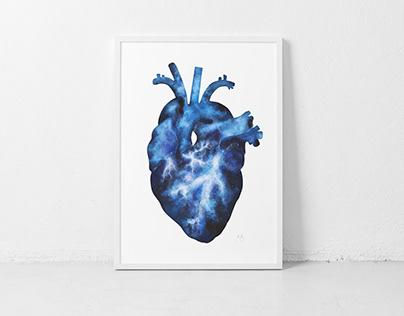 Anatomic Heart