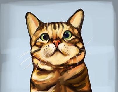 Digital Painting-Animals