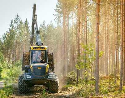 Viken Forest