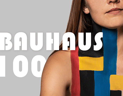 100 BAUHAUS simple shapes