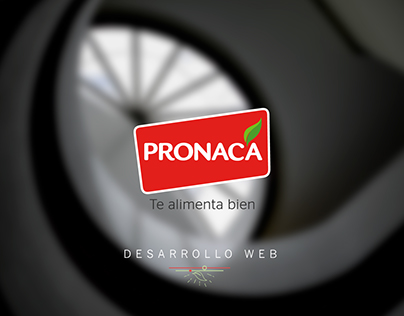 PRONACA WEB