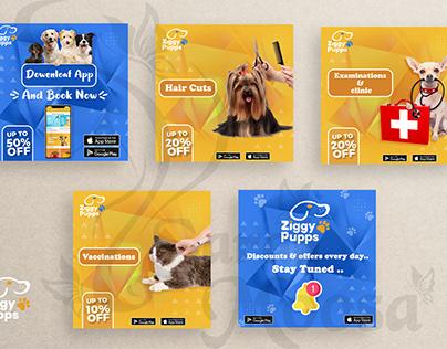social media ( Ziggy Pupps )