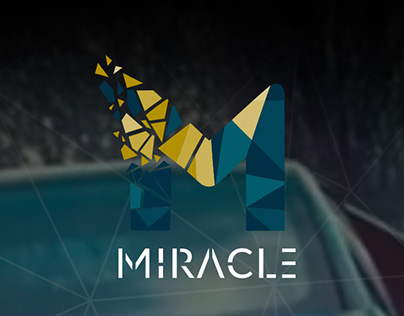 Miracle Video Agency