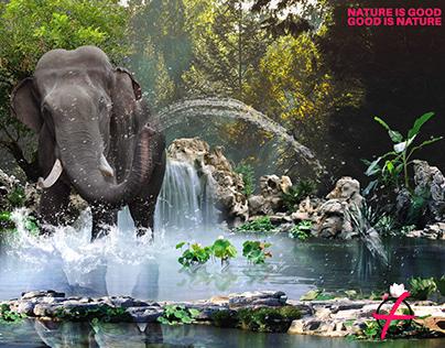 Photomontage Elephant