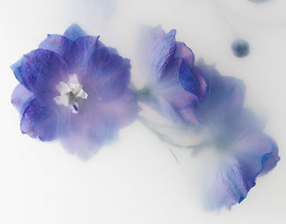 FlowerPower Underwater
