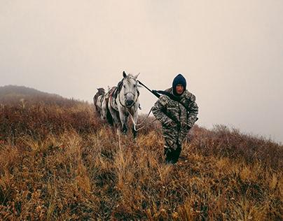 Nariman, the horse man