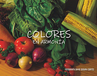 Colores en Armonía