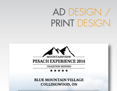 Ad/Print Design Campaign - Pesach Experience  2014