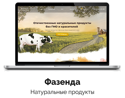 Site for brand of natural food products