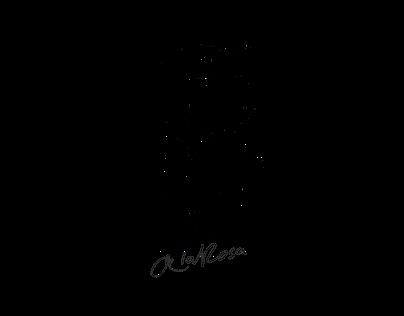 Portfolio - Felo de la Rosa