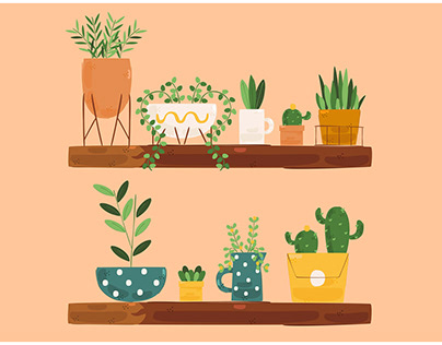 Houseplants Illustration