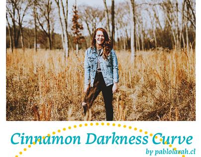 Free Photoshop Curve & LUT Cinnamon Darkness