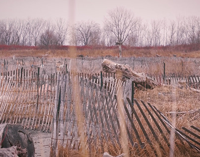 """""""New Text"""" - Landscapes - Ambient Field Recording Test"""