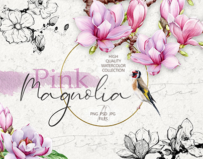 Pink magnolia high quality watercolor collection