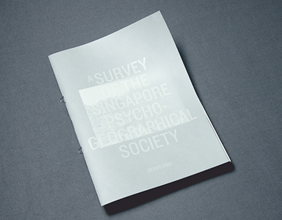 A Survey of the Singapore Psychogeographical Society