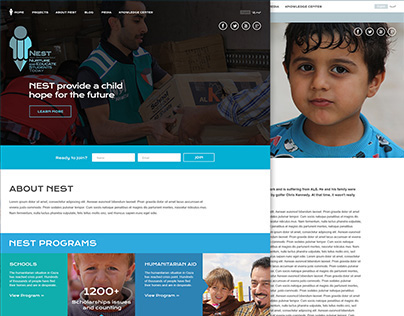 "Website to raise funds for charity ""Nest"""