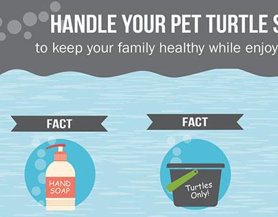 Tiny Turtles Infographic