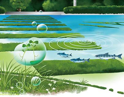 Greening (Kimiko Umekawa)Photoshop