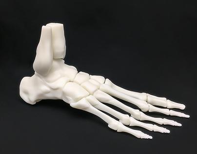Human foot sculpture