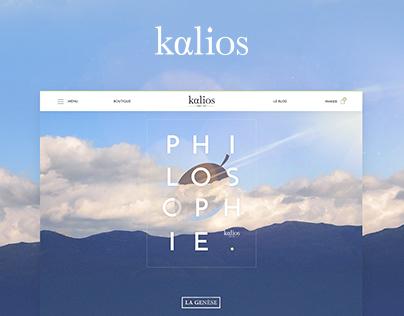 Kalios 网站电子商城设计UI设计