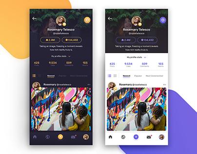 Dark and Light Theme Profile UI