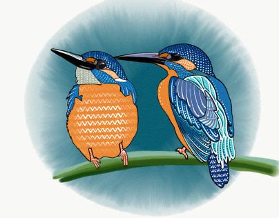 Birds of Poland