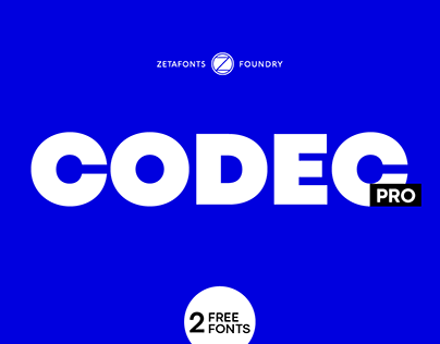 Codec Pro - The Workhorse Sans with two free weights